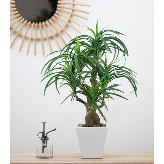 Dracaena artificiel en pot céramique carré blanc 63 cm