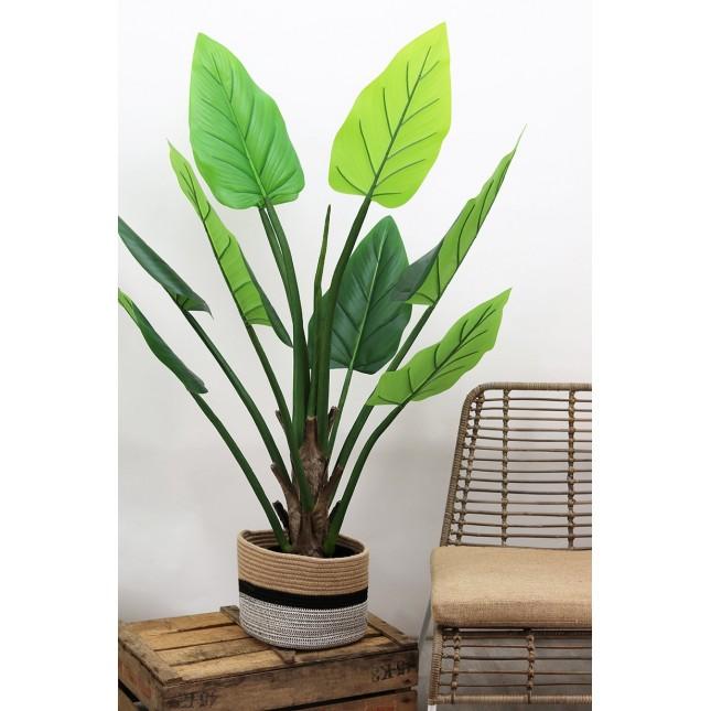 Alocasia artificiel 9 feuilles 125cm