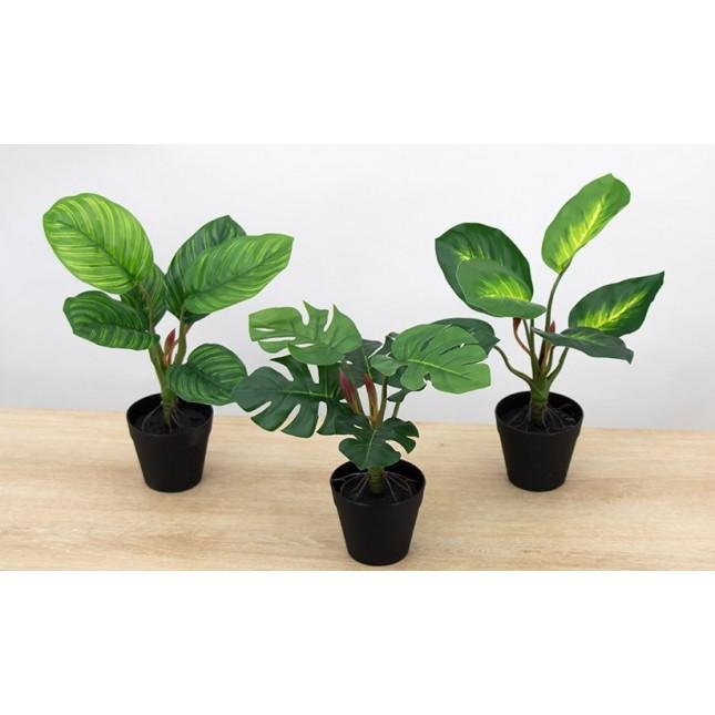 Plantes tropicales artificielles Ligne Déco