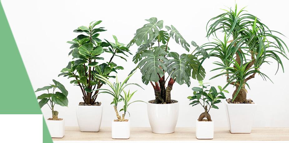 Ligne Déco plantes, arbres artificielles